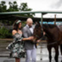 racing: former kiwis deliver double for oz syndicators