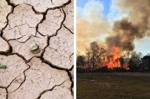 kent climate emergency: this is what kent and sussex will look like in the year 2050