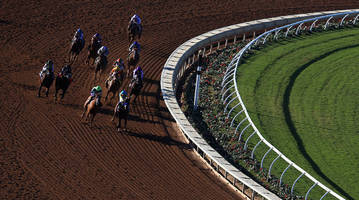 two horses dead at del mar racetrack after training accident