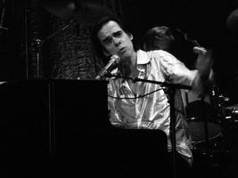 nick cave's answer to a bigot is simply fantastic