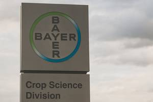 bayer sells dr scholl's to us-based yellow wood partners for €521m