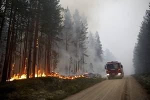 putin agrees to send troops to help put out siberian wildfires