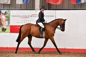 'he owes me nothing': devon ex-racehorse secures sixth consecutive ticket to hoys