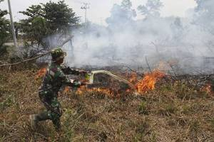 Indonesian President Threatens To Lay Off Firefighters Over Rampant Forest Fires
