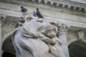 iconic nypl lions patience & fortitude will get a $250,000 laser bath