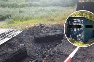 popular forest farm has been damaged in suspected arson attack