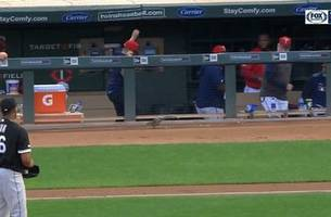 watch: squirrel invades twins' dugout during game