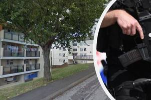 armed police incident in teignmouth - live updates
