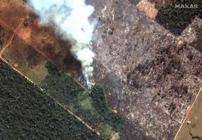the blazes in the amazon are so big they can be seen from space. one map shows the alarming scale of the fires.
