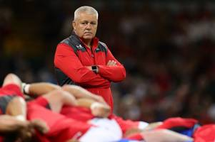 New Zealand legend insists Warren Gatland is a prime candidate to take over the All Blacks