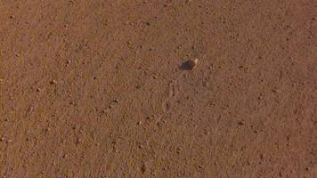 nasa names moving rock on mars after rolling stones