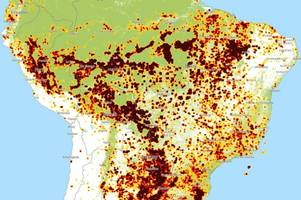 real time maps show terrifying extent of amazon rainforest fires