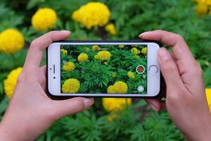 how to speed up a video on your iphone, or return a slo-mo video back to normal speed