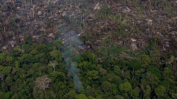 in brazil's amazon, fires threaten the environment and way of life