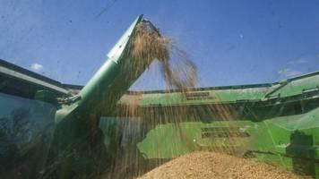 China Eases Tariffs On U.S. Soybean Shipments