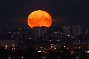 There's a Harvest Moon tonight for the first time in 19 years on Friday the 13th