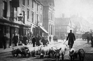 Origins of the Peaky Blinders shocks author of new book about Birmingham gangs