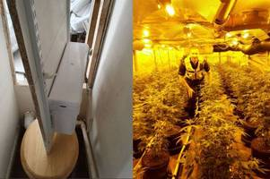 police bust huge cannabis factory hidden behind fake toilet and secret passageway in west bromwich home