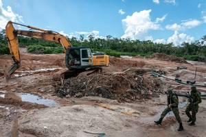 rainforest mafias: how violence and impunity fuel deforestation in brazil's amazon