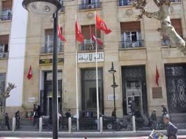 moderate islamist ennahda backs saied in tunisia's presidential run-off