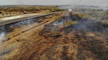 brazil arrests 63, levies $8.7 million in fines over fires