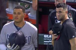 highlights: dbacks walkoff against the padres in final game of season