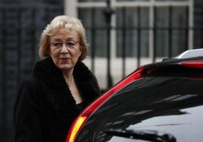Andrea Leadsom says no backstop including time-limited one will be in Brexit deal