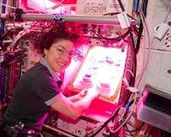 first all-female spacewalk now later this week, says nasa