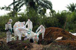 central african countries in talks on boosting anti-ebola fight