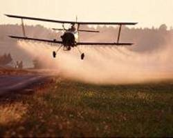 study details version of insecticide ddt lost in aftermath of wwii