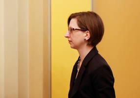 pentagon official handling ukraine, russia testifies