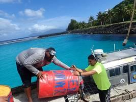 interim bottomfish measure addresses overfishing, allows american samoa fishery to operate
