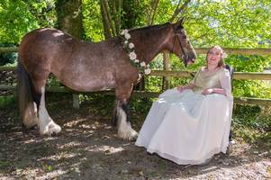 'riding has changed my life': inspirational disabled woman from devon explains why she couldn't be without horses