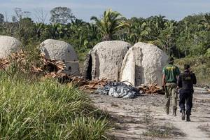 Brazil says indigenous forest guard killed in Amazon ambush