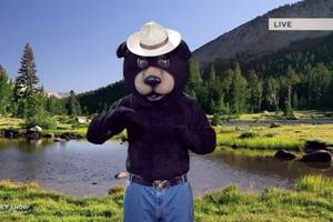 smokey the bear revealed to be an ex-con in 'the daily show' gag (video)