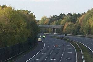 Motorists who moaned about M5 traffic when body found on motorway criticised