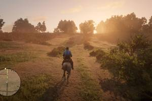 Red Dead Redemption 2 on PC would be great if I could actually play it