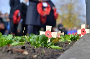 Remembrance Sunday services and parades in Surrey and Hampshire 2019