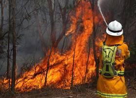 scores of bushfires rage across eastern australia