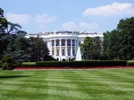 all of america's 607 billionaires must run for president