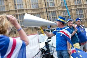 the man who shouts 'stop brexit' outside parliament, steve bray, is to stand to be a welsh mp