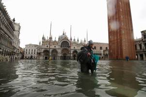 venice floods leave tourists wading through six feet of water as landmarks like st mark's basilica flooded