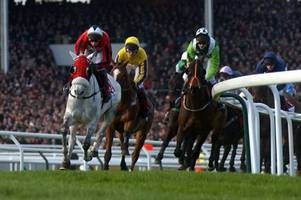 inspection due to decide whether cheltenham races goes ahead tomorrow