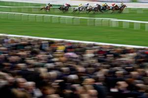 cheltenham races' november meeting given the go-ahead after inspection