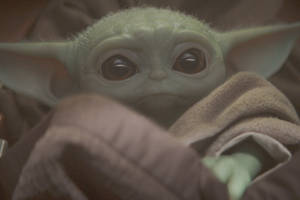 'the mandalorian' star giancarlo esposito loves baby yoda just as much as you do (video)