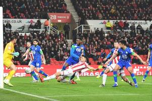 'haven't for a while' - the pundit view that stoke city fans will love