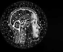 Brain networks that play key role in suicide risk identified