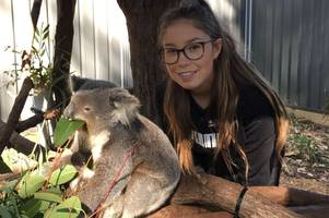 the touching reason a lincoln teenager is helping koalas in australia