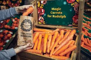 Morrisons to give customers thousands of free wonky carrots for Rudolph