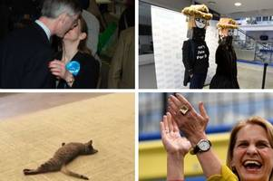 general election results: 7 bombshells that dropped in somerset while you were asleep